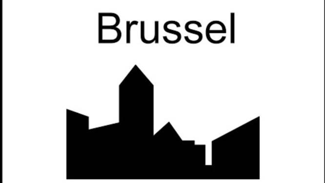 Gemeentebestuur Hoegaarden steunt N-VA-motie tegen stadstol in Brussel niet