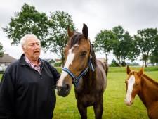 Duizend euro voor gouden tip over brute mishandeling paard in Wanneperveen