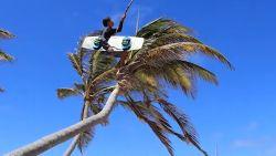 Kitesurfer springt uit palmboom in de zee