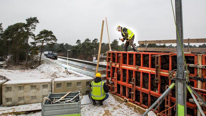 ProRail bouwt een ecoduct over de weg en een faunatunnel onder het spoor.