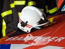 Brandweer breekt deur open om hond  uit brandende woning te redden