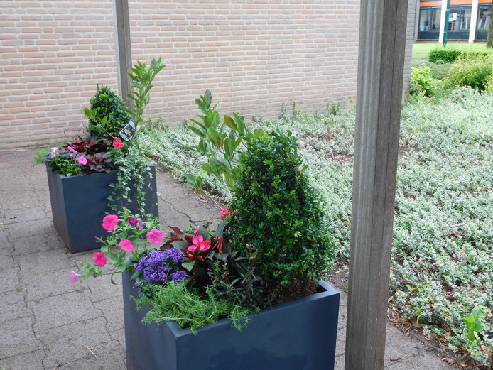 2 van de 3 bloembakken (aangeboden door dorpsraad Lith)