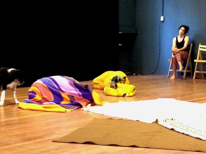 Theater maken met hondjes en hun baasjes