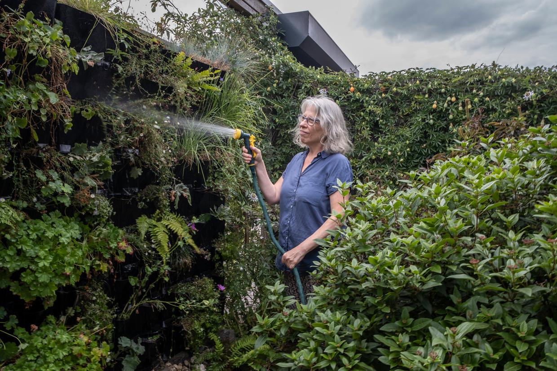 Maria Verbaal sproeit haar tuin in Eindhoven
