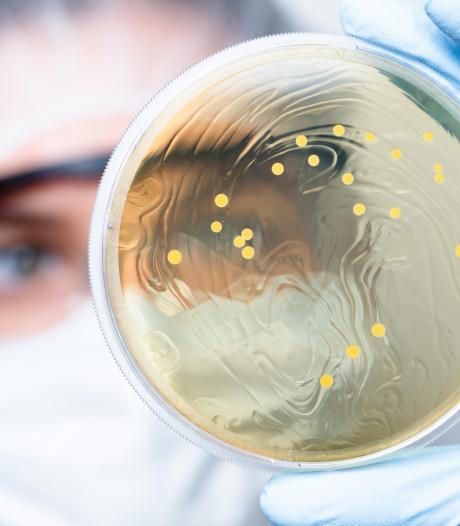 Amerikaanse wetenschappers pleiten voor kluis vol zeldzame bacteriën