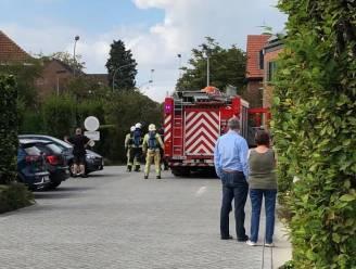 Haag vat vuur tijdens het wieden van onkruid