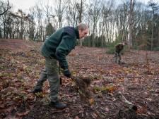 Na de tranen van Maria 'mooier bos dan ooit' op landgoed Warnsborn