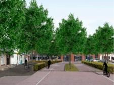 D66 Uden: 'St. Janstraat tijdens feestdagen niet op de schop'
