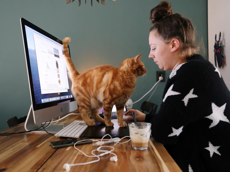Een typisch thuiswerkscenario voor mensen met een kat.  Beeld REUTERS