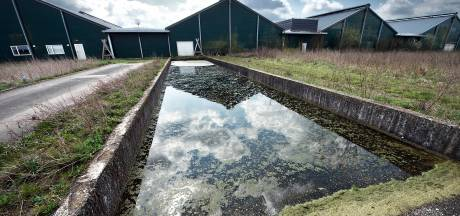 Koolen hoeft Groesbeekse ex-pluimveehouder niet te betalen voor natuurvergunning