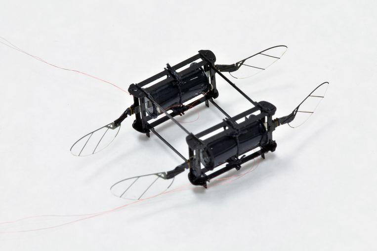 De Robobee: een zacht, vliegend robotje dat tegen een stootje kan. Beeld Harvard Microrobotics Lab