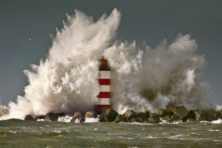 Van de Noordzee een zelfstandig rechtspersoon maken heeft volgens Laura Burgers nog heel wat voeten in aarde. Beeld Getty Images