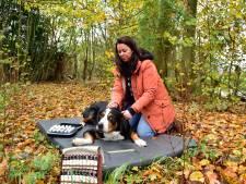 Je hond op retraite sturen: deze vrouw helpt de stress-emmer van je huisdier te legen