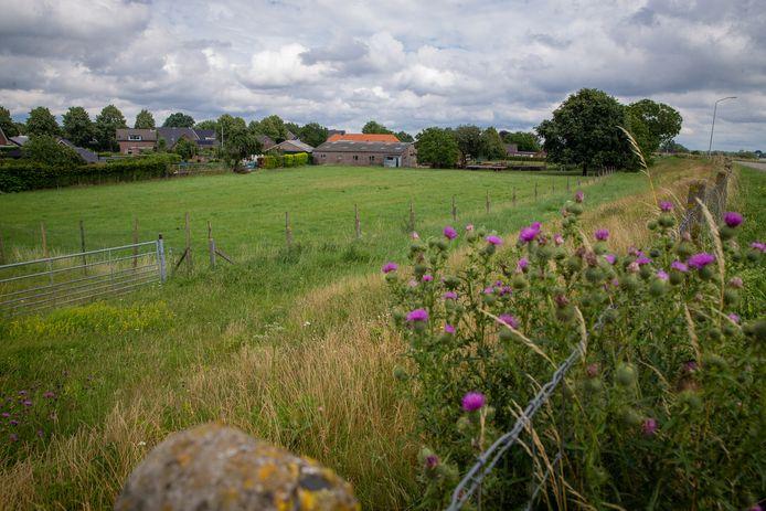 Hier langs de dijk bij Niftrik komen mogelijk huizen.