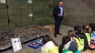 110 scholieren kijken 'Binnen bij Boeren'