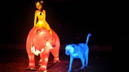 Jungle Book Light Festival in de Zoo