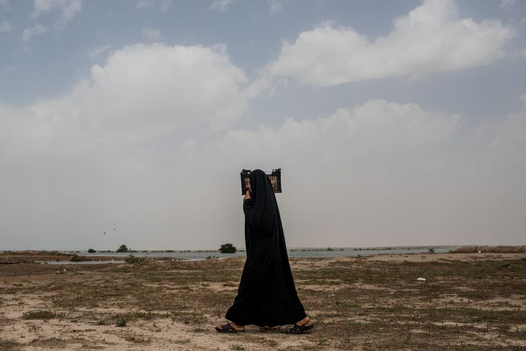 Het tekort aan water in Khuzestan komt volgens betogers door de aanleg van dammen voor oliewinning.  Beeld Hollandse Hoogte