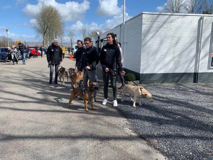 Leden en honden van Signi bij het Mauritshof in IJzendijke.