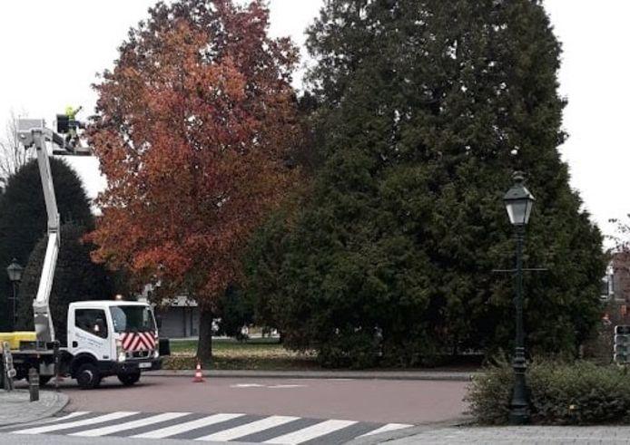 De technische dienst verwijdert het beeld uit de boom.
