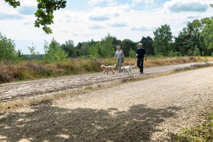Op veel plekken in de Maashorst moeten honden aan de lijn.