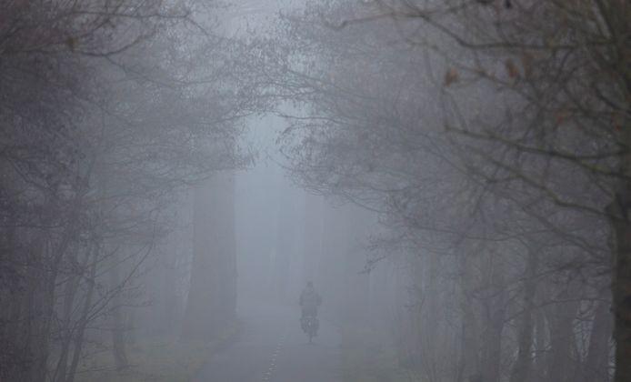 De vrieskou is volgens weerman Ben Lankamp onder meer te danken aan de dichte mist van vandaag.