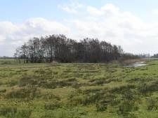 Provincie Noord-Brabant wil minder regels voor natuurontwikkeling