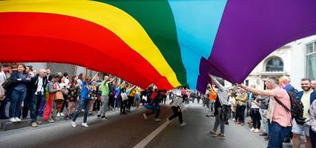 """Un test de """"diversité"""" pour pouvoir défiler à la Belgian Pride"""