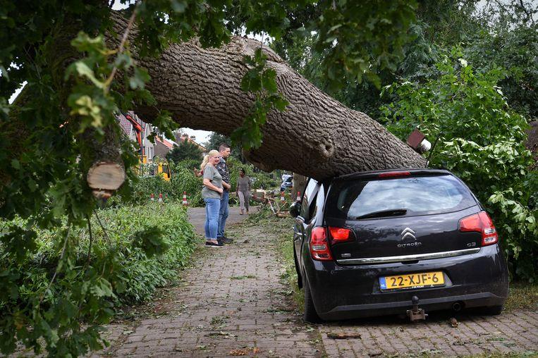 Een boom is op een auto gevallen.  Beeld Marcel van den Bergh