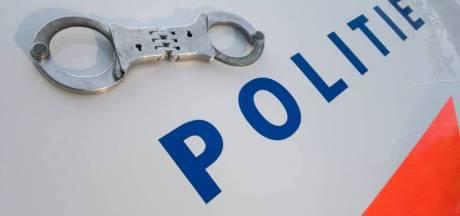Agent bij aanhouding mishandeld in Lelystad