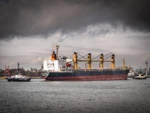 Gemeenteraad bijna unaniem akkoord met fusie van Port of Antwerp Bruges, alleen PVDA stemt tegen