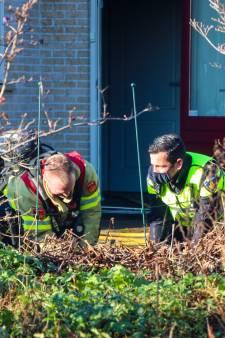Woningbrand in Drempt: twee van de drie huiskatten omgekomen
