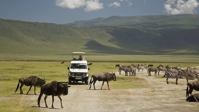 Masai worden massaal van hun land verdreven in Tanzania om plaats te ruimen voor luxesafari's