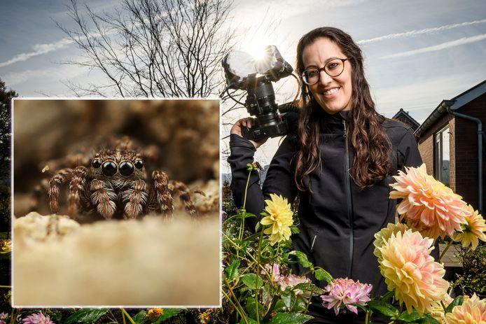 Redacteur en macrofotograaf Marit van Ekelenburg beschrijft elke vier weken de natuur die met het blote oog amper te zien is. Maar wie inzoomt, stuit soms op heel bijzondere karakters. Wat te denken van... de springspin.