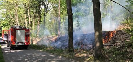 Bos vliegt in brand bij Rozendaal