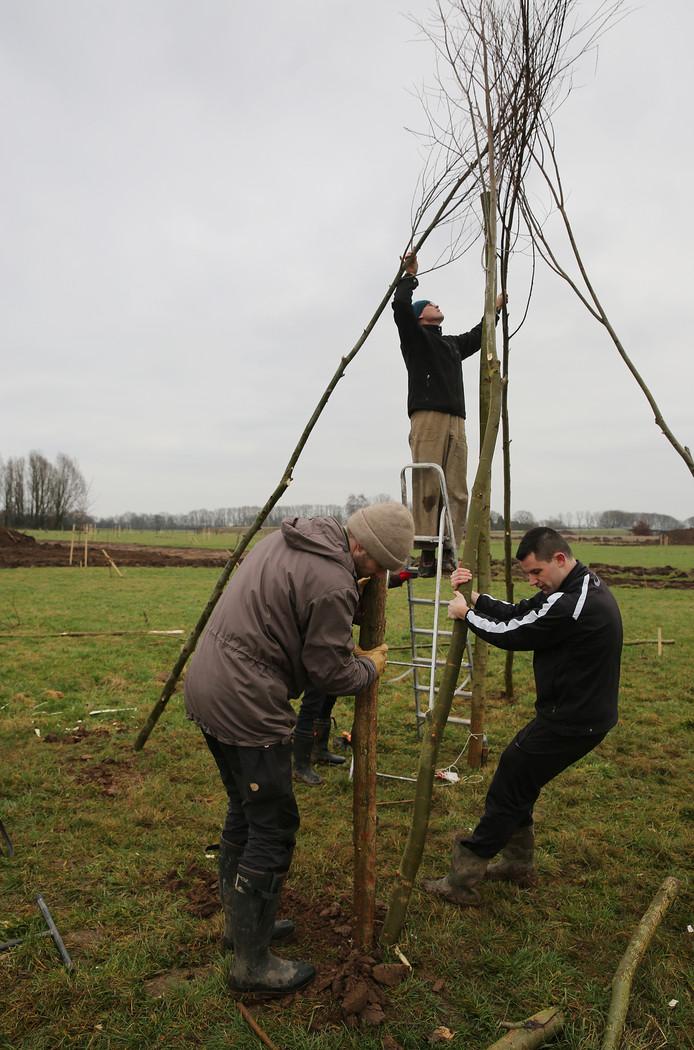 Het Voedselbos in Brummen wordt aangelegd.