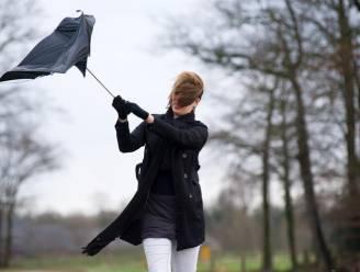 Het is officieel: er trekt storm over het land, al windstoten tot 108 km/u gemeten