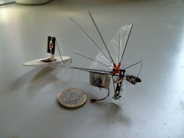 De DelFly Explorer, een hightechlibel van 20 gram, ontwijkt zelfstandig hindernissen.  Beeld rv