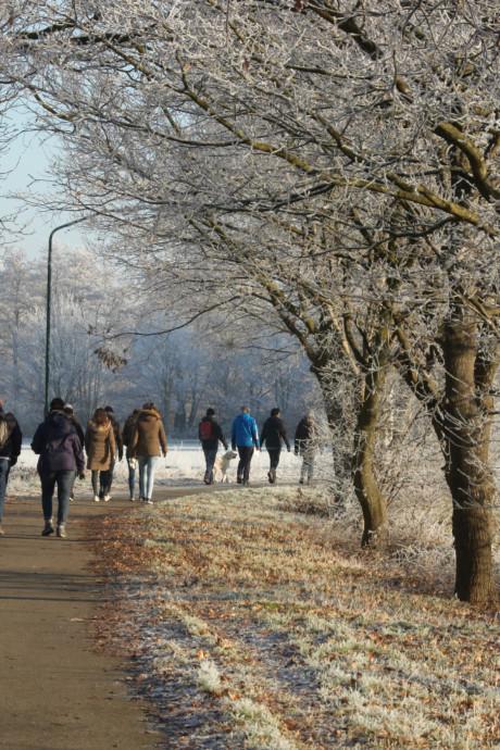 Maak tijdens uw Winterwandeltocht de mooiste foto