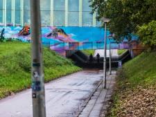 Politiek in Enschede is getreuzel zat en wil nú veilige oplossing voor fietstunnels