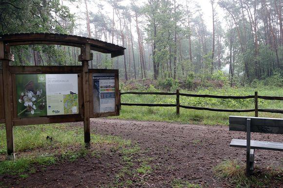 De Visbeekvallei is een van de drie thuisbasissen van de adder, naast Kalmthout en Brecht.