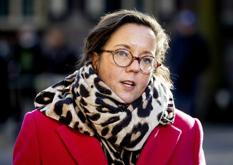 Tamara van Ark, demissionair minister voor Medische Zorg. Beeld ANP