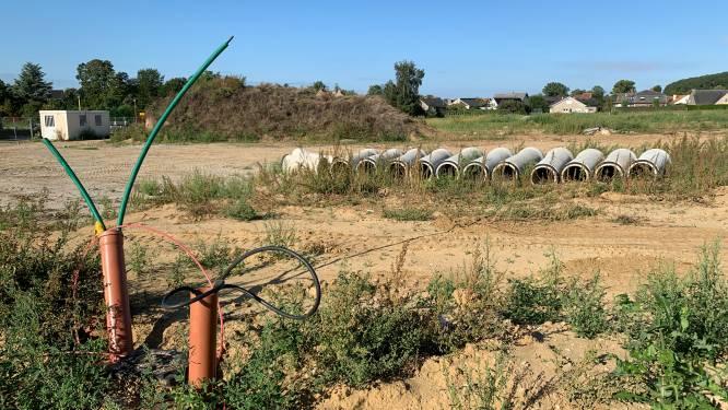 Raad van State legt een bommetje onder Matexi-verkaveling Beigemveld in Grimbergen