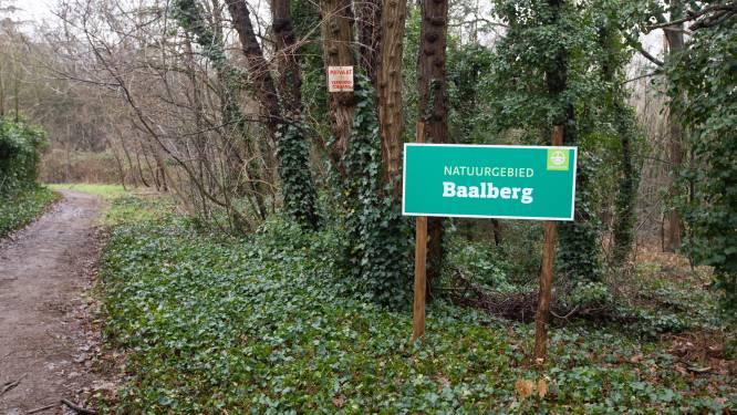 """Bos aan Baalberg is nu voor eeuwig beschermd na aankoop door Natuurpunt en Tessenderlo: """"We gaan topnatuur maken van dit unieke gebied"""""""
