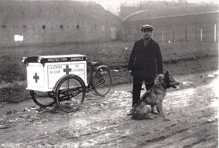 Een beeld uit de beginjaren van het Blauwe Kruis van Oostende, toen medewerkers nog met een bakfietsrondreden om honden te verzorgen.