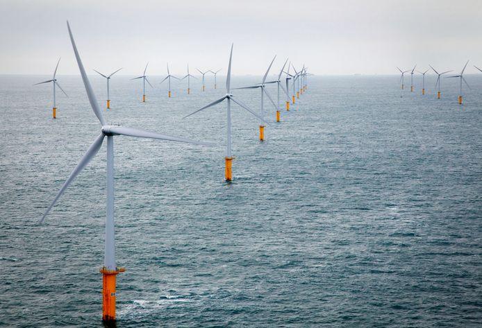 Beelden van windpark Dassenveld, de windparken in de Noordzee.