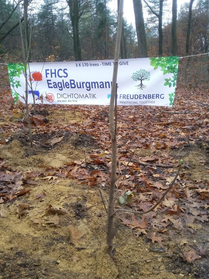 De boompjes waren een geschenk van bedrijf Freudenberg dat 170 jaar bestaat.