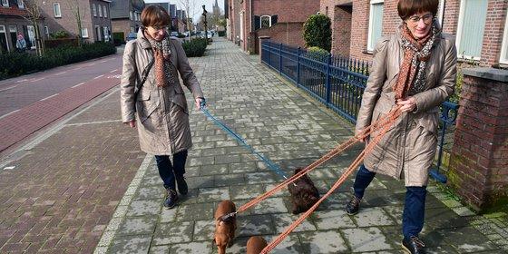 Wat weten we  over de eerste Nederlandse coronagevallen?
