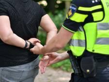Drie arrestaties na reeks vernielingen en inbraken in auto's in Borculo