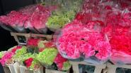 Anjerkweker Rik Degryse zet woonzorgcentra letterlijk in de bloemen