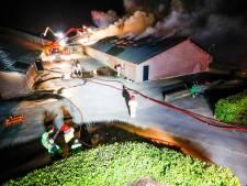 Duizend dieren dood bij zeer grote brand in varkensstal Lierop